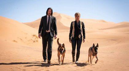 """Filmo """"Džonas Vikas 3"""" kūrėjų iššūkiai tapo galvos skausmu ne tik K. Reevesui, bet ir čia vaidinantiems šunims"""