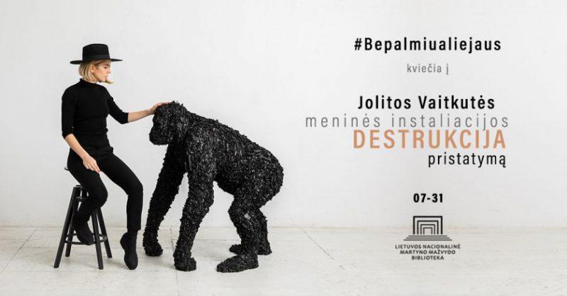 """Jolitos Vaitkutės instaliacijos """"Destrukcija"""" pristatymas Nacionalinėje bibliotekoje"""
