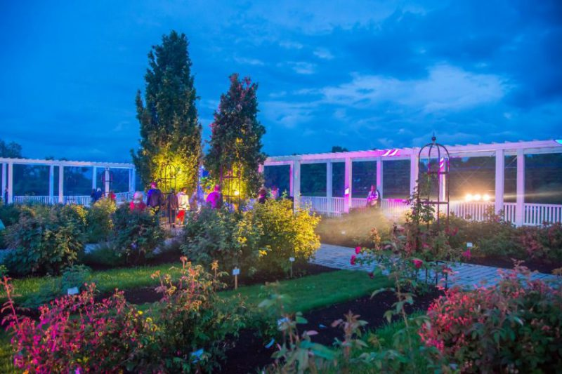 """""""Kvapų nakties"""" magija VDU Botanikos sode: panaudosime visus turimus pojūčius"""