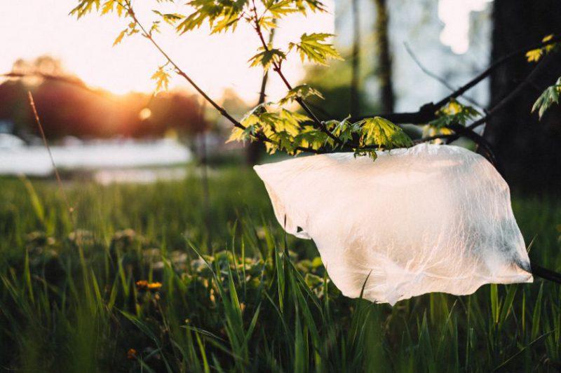 Mažiname sunaudojamo plastiko kiekį – nuo ko pradėti?