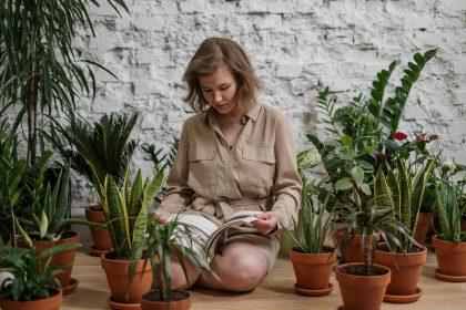 Gėlių kuriamas jaukumas – neišeinant iš namų