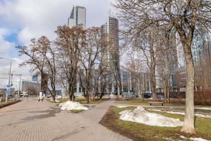 Vilniečių iniciatyva: miesto centrekuriamas eksperimentinis skvero apželdinimo projektas
